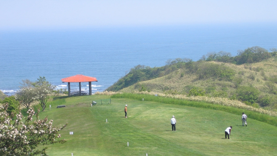 【パークゴルフ】さわやかな海からの風を受けてのプレイ!