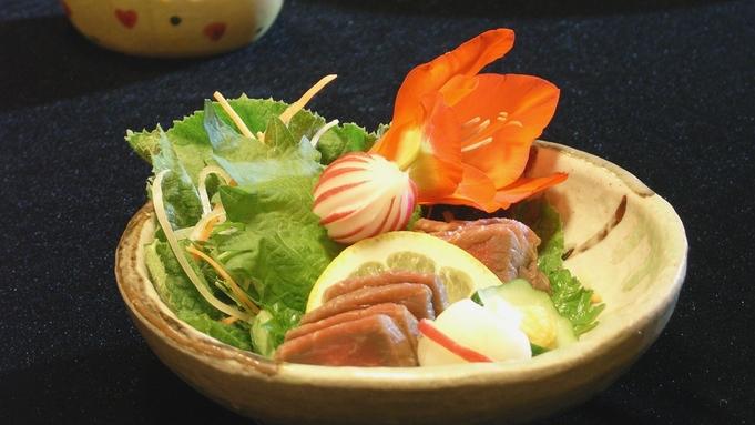 【郷土料理】知る人ぞ知る岐阜グルメと季節の旬料理<けーちゃんプラン>2食付