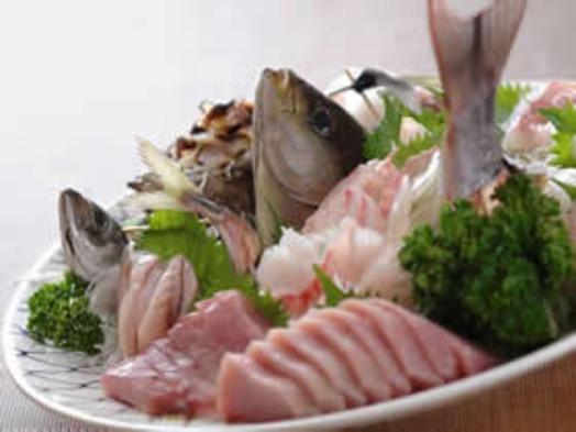 【当館人気NO1 】獲れたてのコリコリ感が沢山味わえる地魚貝類盛合せ付プラン(ペット可)
