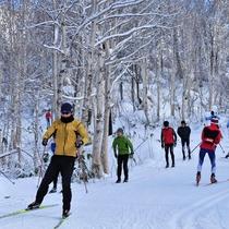 【クロスカントリースキー(冬)】旭岳の冬のアクティビティ「クロスカントリースキー」も楽しめます。