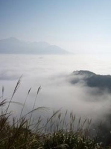 俵山からの雲海