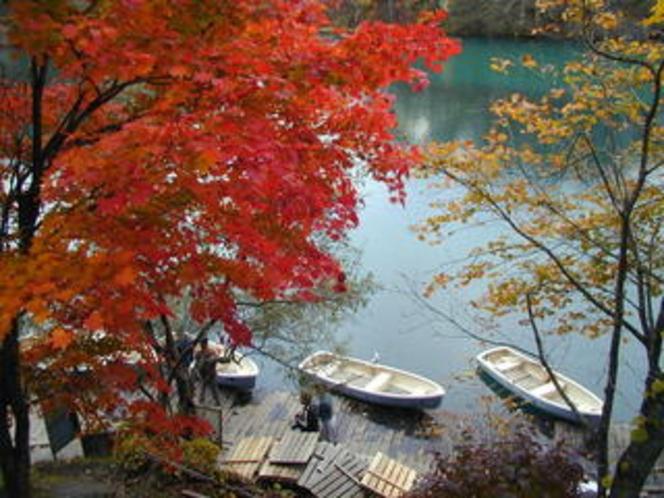 五色沼の紅葉2