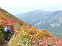 紅葉の磐梯山①