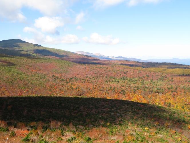 安達太良高原の紅葉①