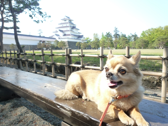 トムテ君と鶴ヶ城