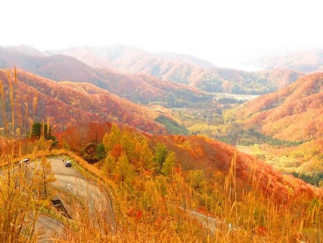 秋のスカイバレー