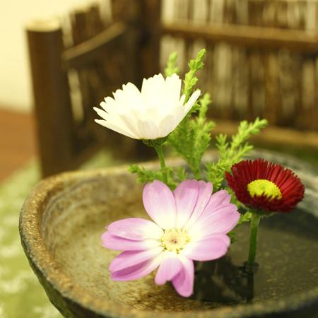 館内 ☆季節のお花☆