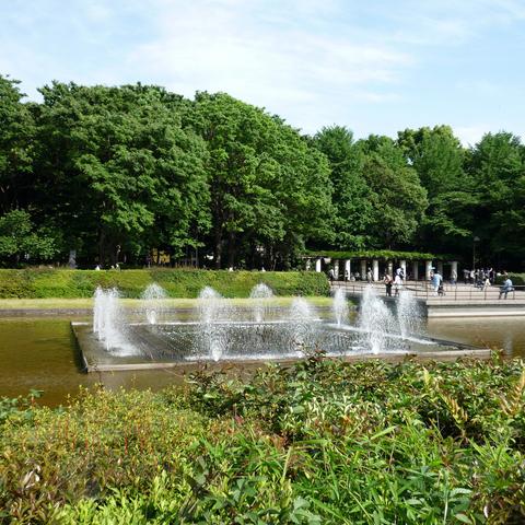 ホテル周辺観光(2) 竹の台噴水 上野公園