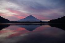 精進湖からみた富士山