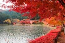 【秋の碓氷湖】「ググっとぐんま写真館」から転載(http://gunma-dc.net)