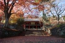 「妙義神社の紅葉」※画像提供:富岡市 妙義神社までは当宿からお車で約20分