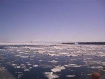 貴重な自然資源「流氷」