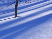 感動の風景は冬に多く見られます。