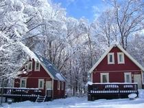 青い空と冬のコテージ
