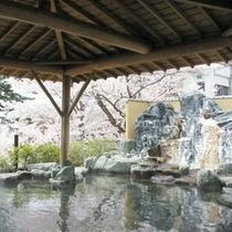 露天風呂(桜)