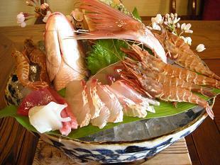 ガサ海老・桜鯛の刺身