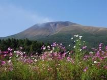 秋の浅間山