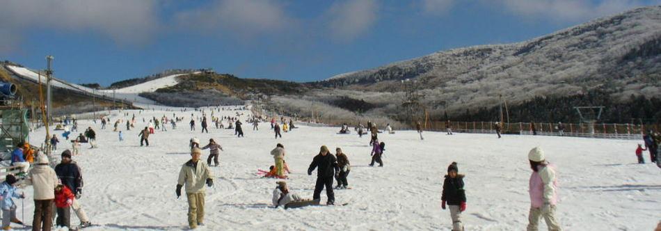 森林 スキー くじゅう 場 公園 熊本発 九重森林公園スキー場スノボツアー