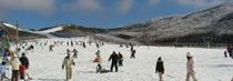 スキー場全景s