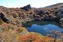 大船山・御池の紅葉