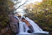 男池・名水の滝の紅葉