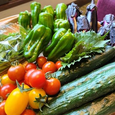 【収穫野菜のお土産付き♪】当ホテル農園で作った無農薬野菜をお土産に♪夕食は北海道100品ビュッフェ