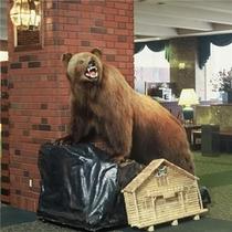 ロビーの熊