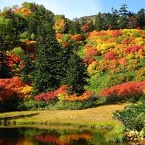 高原温泉滝見沼9月下旬