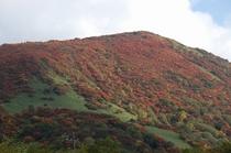 2010那須岳