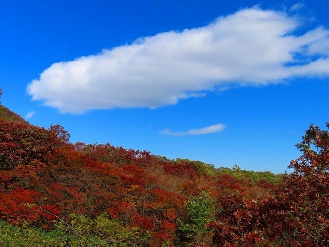 那須山もきれいに色付いています(秋)