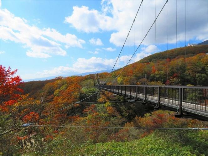 吊り橋からの紅葉もきれい(秋)