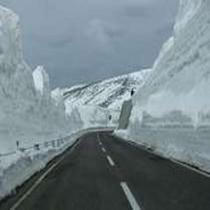 雪の回廊(志賀草津高原ルート)