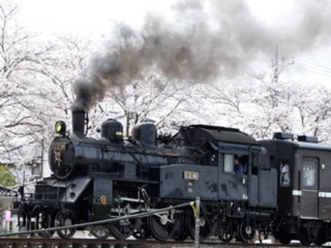 真岡鉄道。下館から茂木までの42kmのローカル線。土・日・祝日には人気のSLが運行して