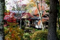 紅葉する庭園と母屋
