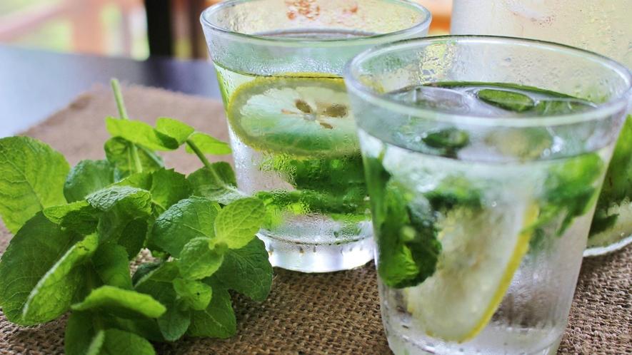 【ミントウォーター】口いっぱいに広がるミントの香りとさわやかなレモンの香りのすっきりハーブ水