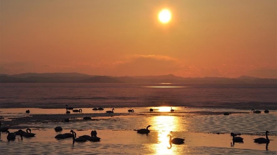 【サロマ湖の夕日(冬)】白鳥が訪れるサロマ湖。冬の凛とした空気が夕日の美しさを際立たせます。