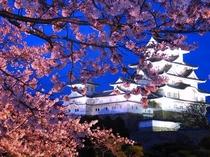 姫路城のライトアップ