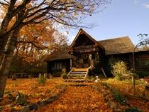 ☆紅葉の絨毯を敷いたログペンション森の散歩