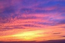 グリーン・バーの庭からの夕陽!