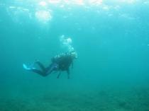 体験ダイビング(モデルはオーナーです)