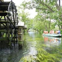 *【クリアボート】底が透明だから生き物や水草を観察!有名な「三連水車」を間近で見れますよ(一例)