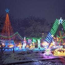 *【冬季限定・イルミネーション】12~1月末まで毎年敷地内でイルミネーションを開催しております