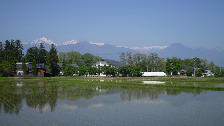 *【夏】新緑と瑞々しい田園風景が広がる夏。常念岳のてっぺんには残雪の姿も。