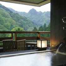 露天風呂付客室(新緑)