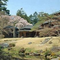 日光田母沢御用邸記念公園の枝垂桜