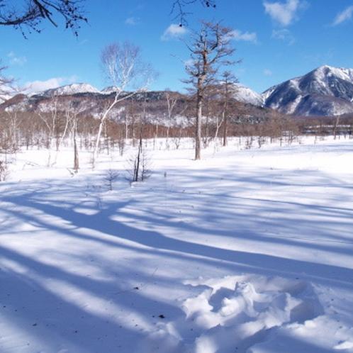 戦場ヶ原(冬)