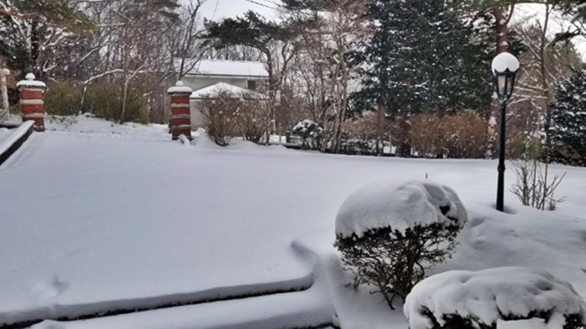 *【冬の外観】春先でもこんなにこんもりと雪が積もることもあります。