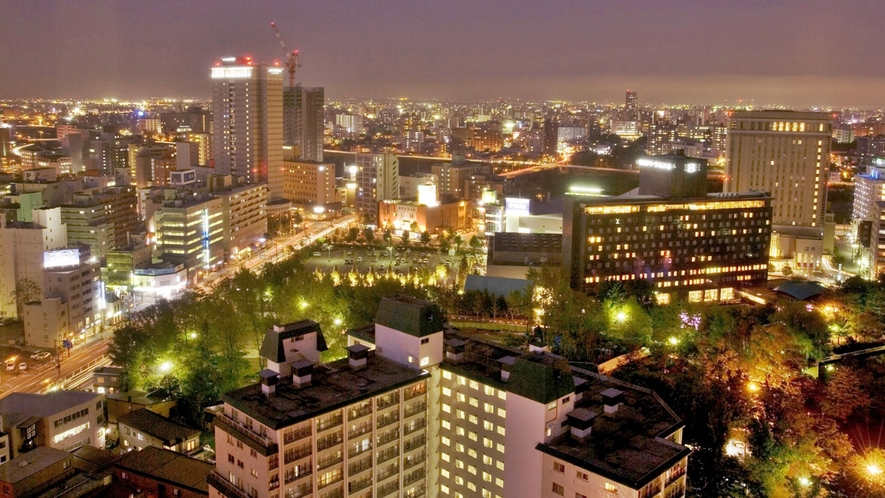 中島公園側夜景(パークビュー)