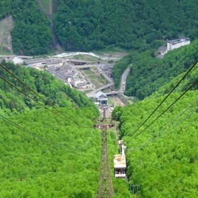 【登山客歓迎】黒岳に登った後は層雲峡温泉♪ゆったり満喫プラン☆1泊素泊