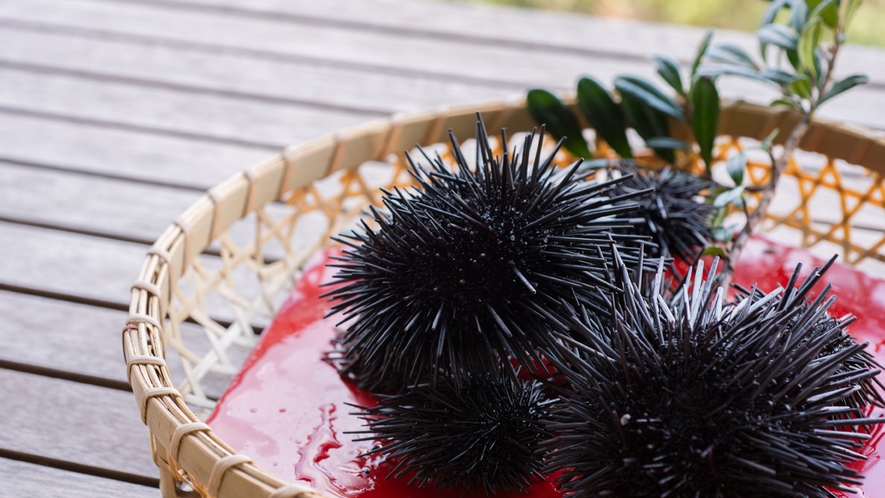 *【夕食別注料理】ちょっと奮発して壱岐特産のウニをどうぞ